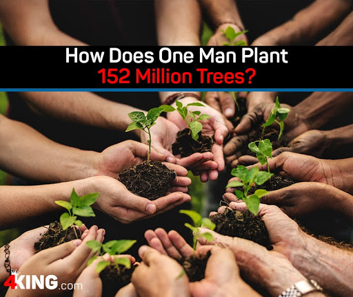 one man plant 152 million trees