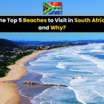 The Top 5 Beaches to Visit in South Africa and Why