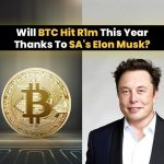 Will BTC Hit R1m This Year Thanks To SA's Elon Musk?